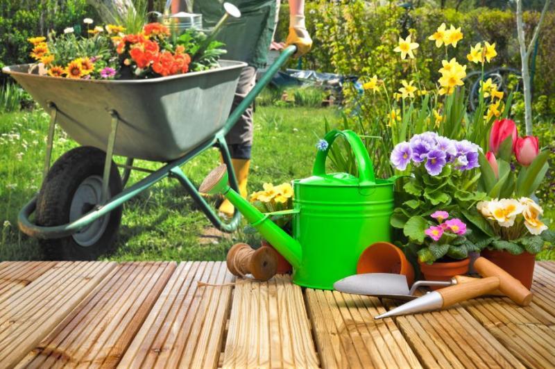 Kedy začať s jarnou prácou v záhrade