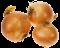 cibuľa a cesnak